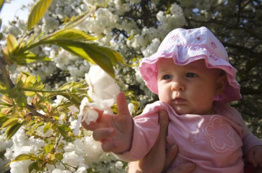 Naître en été donne une meilleure santé à l'âge adulte