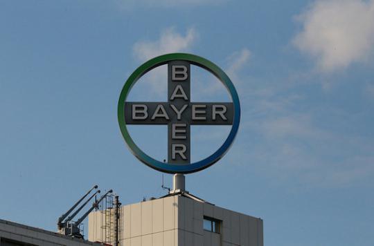 Pesticides : Bayer veut s'offrir Monsanto