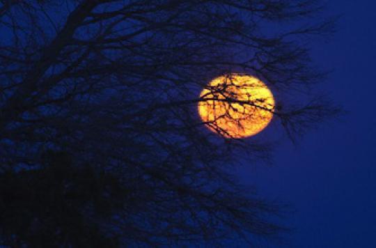 Une preuve de l'influence de la Lune sur le sommeil