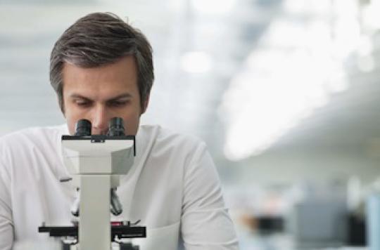 Vieillissement : des scientifiques rajeunissent les muscles d'une souris