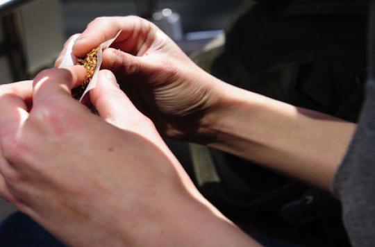 Etude sur le cannabis : 300 volontaires pour 180 places