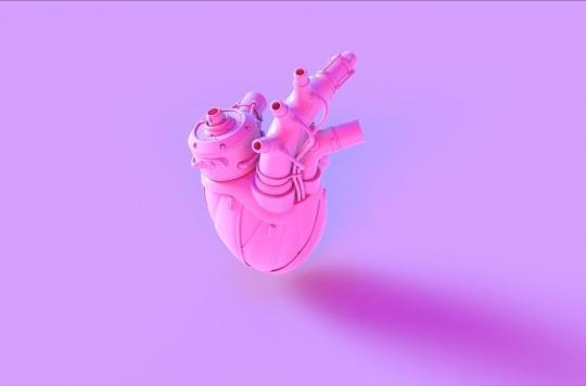 Des dépôts de minéraux spécifiques dans les valves aortiques des femmes