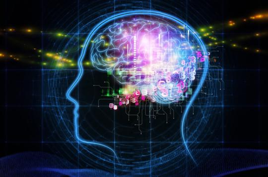 Le cerveau sous LSD fonctionne comme celui des enfants