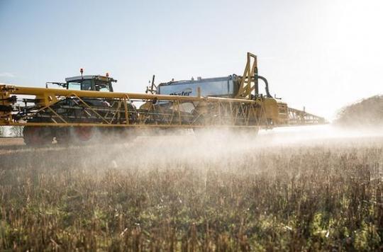 Monsanto : coupable de violation des droits de l'Homme et d'écocide