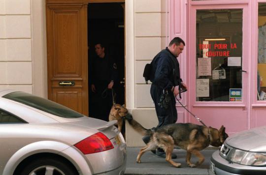 La fiabilité des chiens renifleurs reconnue par les experts