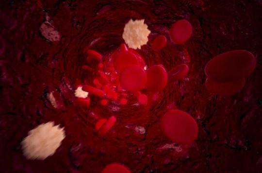 L'inflammation causée par la graisse sanguine peut endommager le cœur et les reins