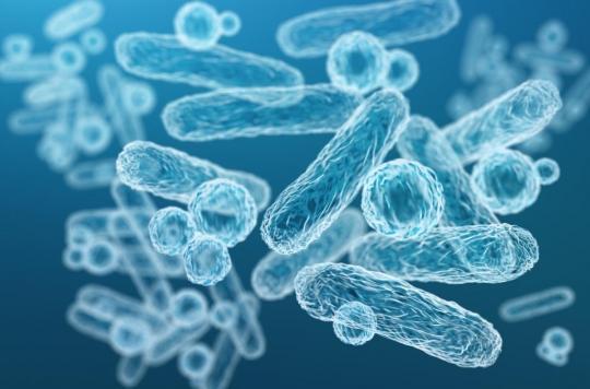 Des Japonais ont percé les secrets de l'antibiorésistance