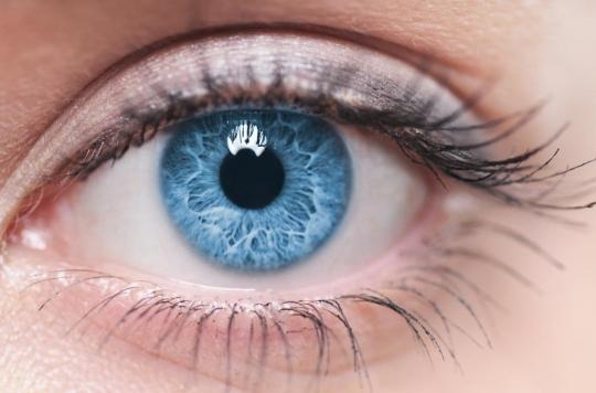 Vision : des chercheurs remettent en question les liens entre l'œil et le cerveau