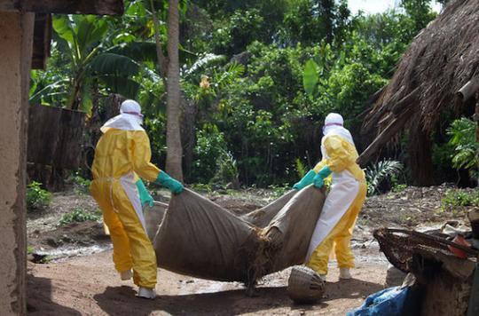 Virus : une coalition pour anticiper les futures épidémies