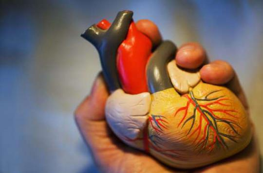 Infarctus : un test sanguin confirme le diagnostic en 1 heure