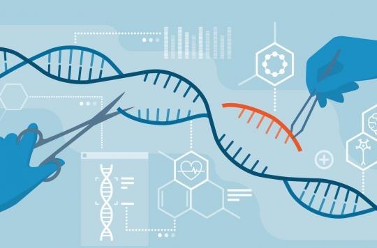 Les ciseaux génétiques seront capables de soigner des cancers