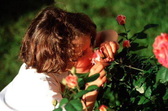 L'odorat pour aider à se reconstruire