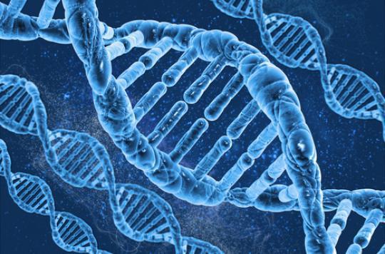 Dépression : la part génétique se dévoile