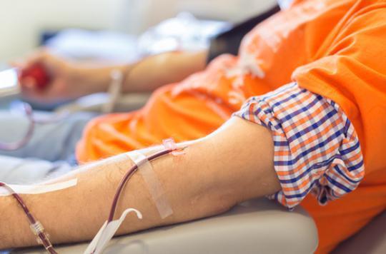 Don du sang : ouvert aux homosexuels en juillet