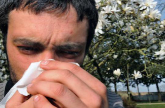 Allergies : les graminées sévissent toujours en France