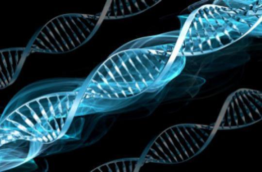 La doyenne du monde était porteuse de 400 mutations génétiques