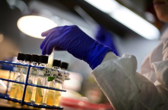 Antibiorésistance : l'environnement montré du doigt