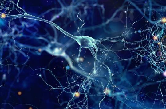 Une nouvelle thérapie génique pour supprimer les crises dues à l'épilepsie