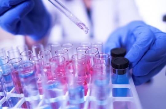 Covid-19 : le virus a-t-il muté en une forme plus contagieuse ?