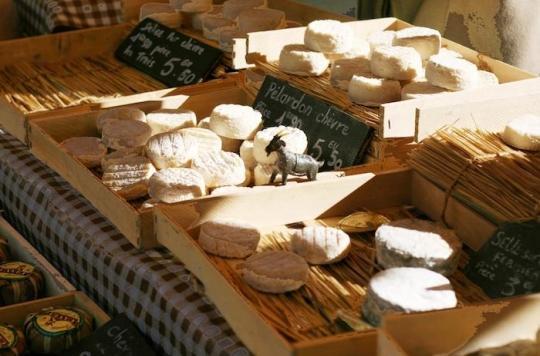 20 cas de toxi-infections à salmonelles: rappel élargi de fromages \