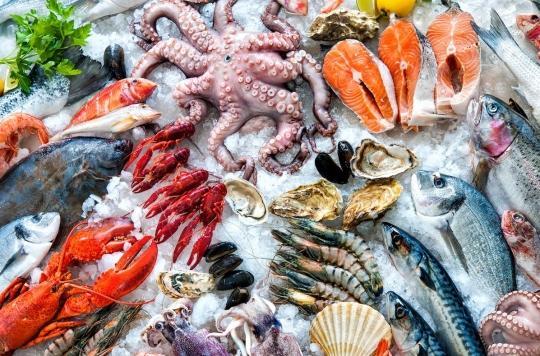Fruits de mer : attention à la bactérie \