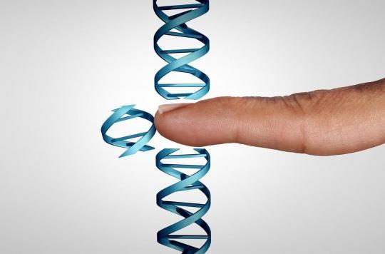 Thérapie génique, un espoir pour des maladies graves