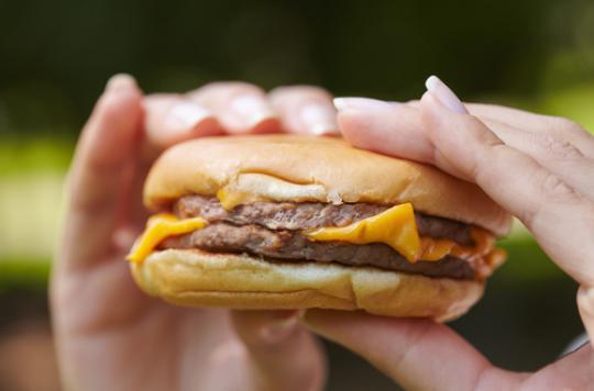 Alimentation : les graisses perturbent les bactéries intestinales