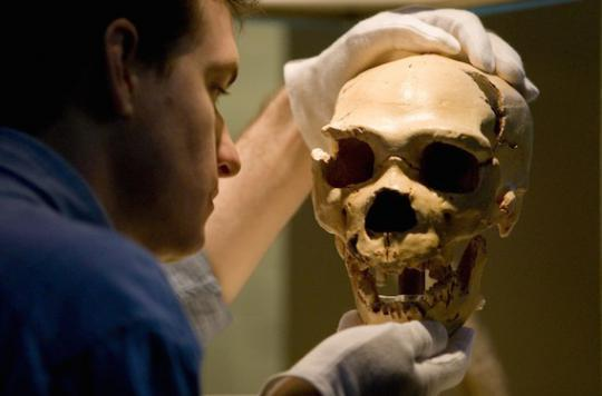 L'homme de Néandertal en dit long sur nos allergies
