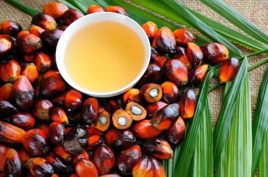 Système immunitaire : les bienfaits méconnus de l'huile de palme