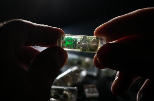 Une capsule à avaler pour analyser l'estomac en temps réel