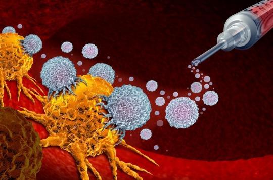 Cancer de la prostate : une bactérie procure un effet \