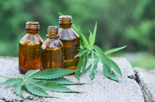 Un concentré très puissant de marijuana consommé par 24% des jeunes dans l'Arizona