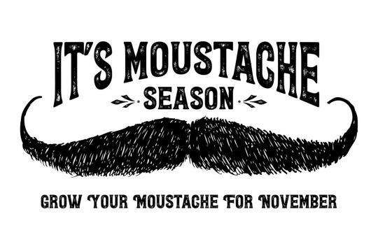 Movember et cancers masculins : \