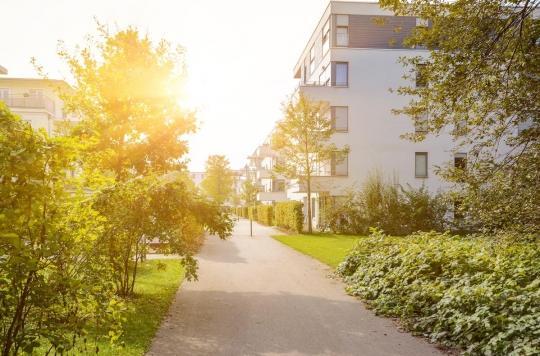 Grandir près de zones vertes améliore le QI et rend plus calme