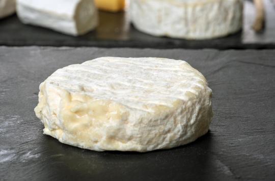 E.coli : rappel de fromages Saint-Marcellin et Saint Félicien après la contamination de 13 enfants
