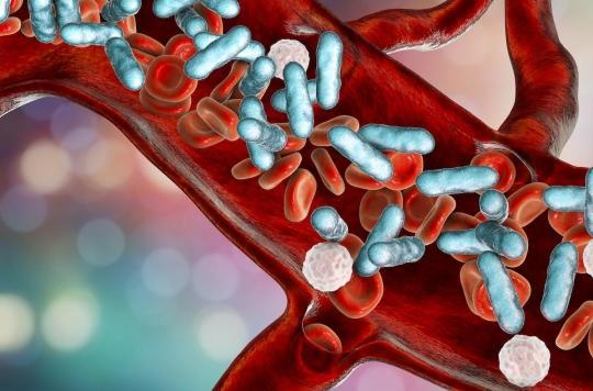 Le microbiote intestinal responsable des surinfections bactériennes