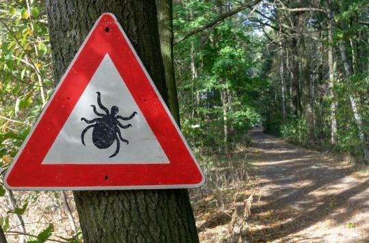 Maladie de Lyme : aux Etats-Unis, les tiques ont-elles été utilisées comme arme biologique ?
