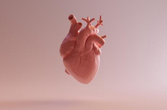 Coeur artificiel : Carmat obtient l'autorisation des Etats-Unis pour un essai
