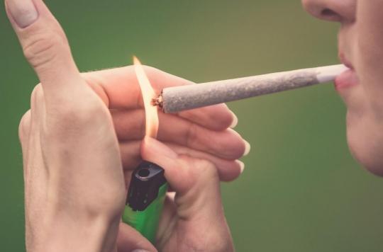 Cannabis : les cas de schizophrénie en hausse sensible
