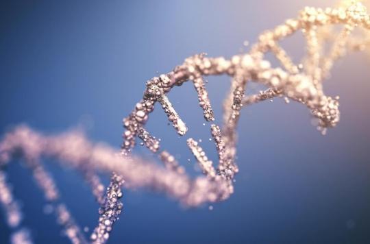 Épigénome : les perturbateurs endocriniens au début de la vie et un mauvais régime alimentaire plus tard accélèrent son vieillissement