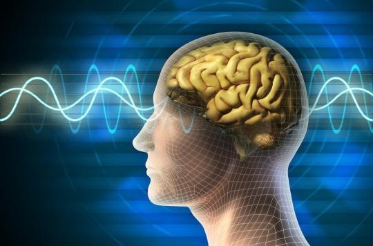 Comment notre cerveau repère les différences