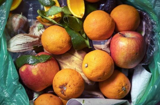 """Alimentation : un """"pacte"""" signé par 38 distributeurs pour limiter le gaspillage alimentaire"""