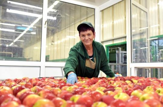 Comment la crise sanitaire a bouleversé l'industrie agro-alimentaire française