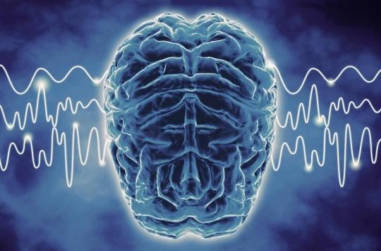 Cerveau : les ondes cérébrales spécifiques à nos états de pensée identifiées
