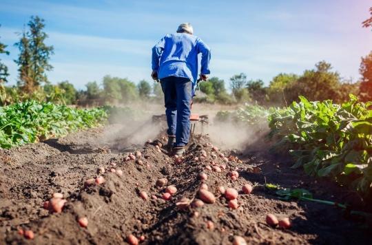 Cancer : les agriculteurs en première ligne