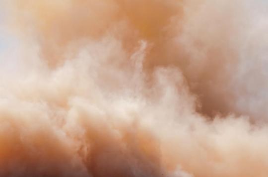 Nuage de sable du Sahara : quels risques pour la santé ?