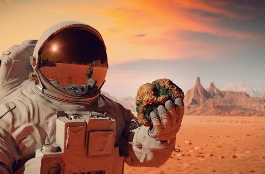 Comment le microbiote intestinal peut protéger la santé des astronautes
