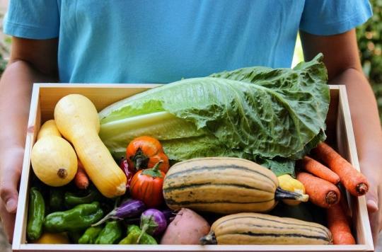 Diabète de type 2 : manger bio et perdre quelques kilos diminuent le risque