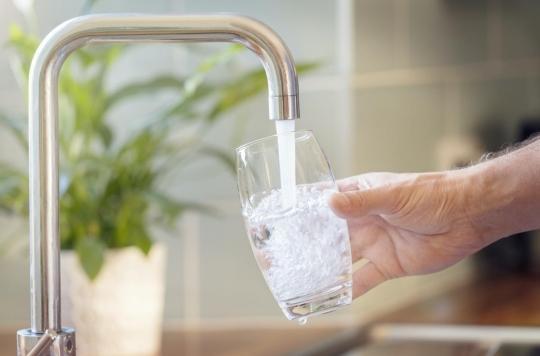 """Comment les """"neurones de l'eau"""" organisent le mécanisme de soif"""