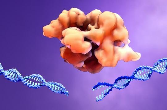 Thérapie génique : des chercheurs ont trouvé comment contourner le système immunitaire